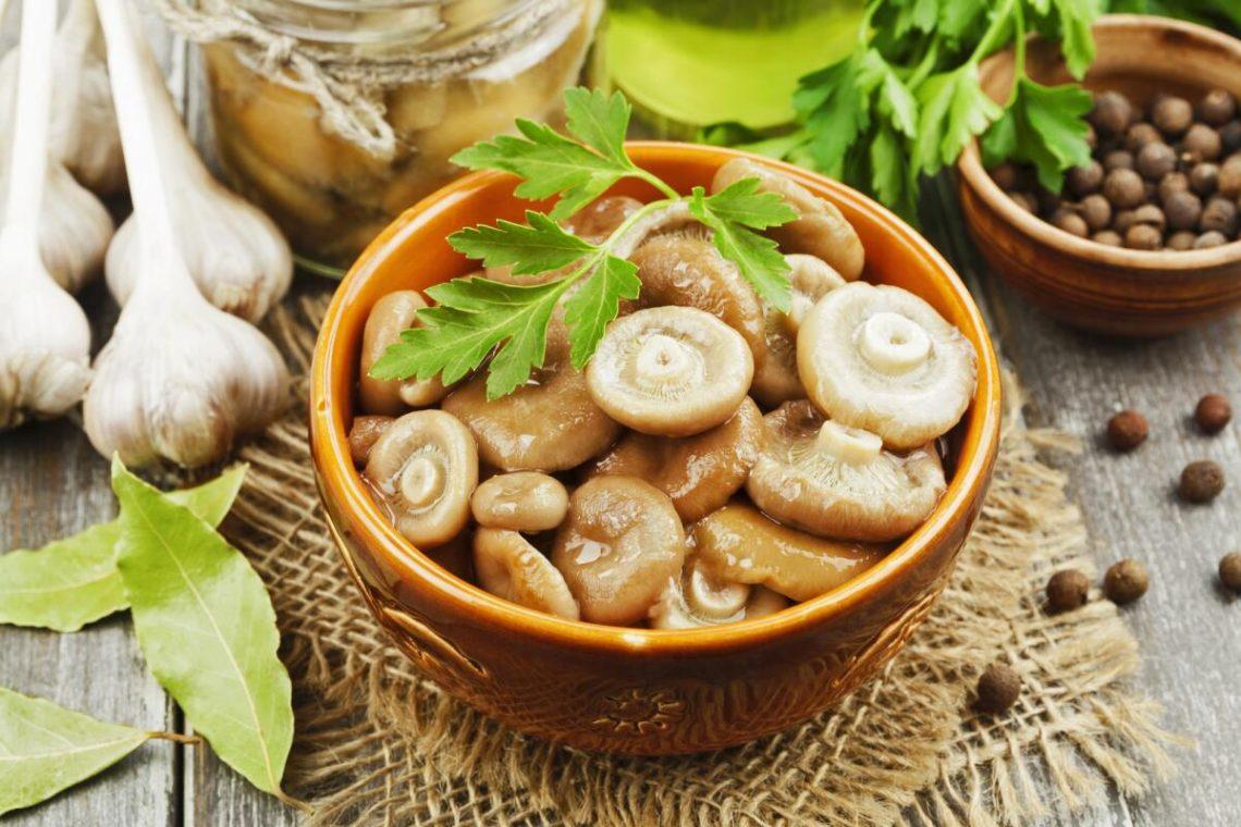 рецепт соленых грибов